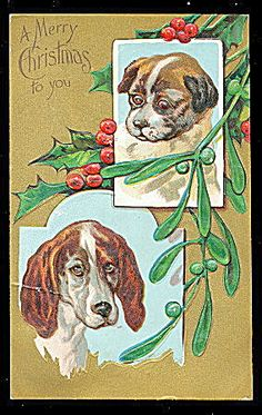 Merry Christmas Dog & Puppies 1908 Postcard. Click on the image for more information.