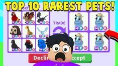 Shadow Dragon, Best Trade, I Want Him, Retro Wallpaper, Animal Drawings, Battle, Unicorn, Adoption, Neon