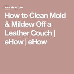 how to clean piss off a couch