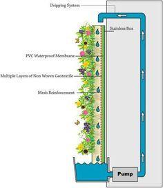 5 Fabulous Ideas For Landscaping With Rocks Seek an Idea: Green Walls mur vegetal instructions Vertikal Garden, Green Facade, Vertical Garden Wall, Modern Roofing, Water Walls, Aquaponics System, Aquaponics Diy, Hydroponic Systems, Irrigation Systems