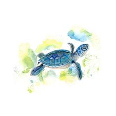 The print of the baby sea turtle painting showcases the grace of a swimming turtle at sea. The ocean wall art stands out in vibrant hues of blue and silver, making it a nice addition to a nautical pri Sea Turtle Painting, Sea Turtle Art, Baby Sea Turtles, Turtle Love, Turtle Baby, Sea Turtle Nursery, Tattoo Tortuga, Turtle Tattoo Designs, Sea Turtle Tattoos