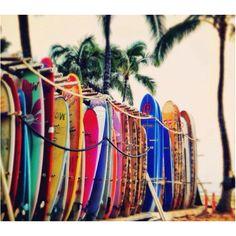 Plethora of boards