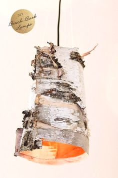 Love these DIY Birch Bark Lamps from Poppytalk! Diy Holz, Colorful Furniture, Lampshades, Projects To Try, Wood Projects, Diy Crafts, Crafty, Pendant Lamps, Pendant Lighting