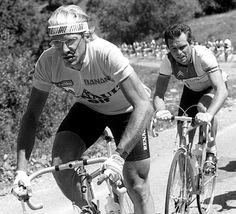 Laurent Fignon & Bernard Hinault