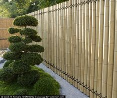 Bamboo fence, I love this in combination with the gravel and the black wire or rope that holds the fence together, great!