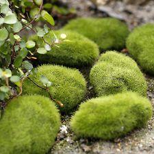Miniature Grass Figurine Craft Plant Pots Fairy Dollhouse Decor Garden Ornament