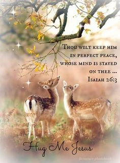 Isaiah 26:3                                                                                                                                                                                 More