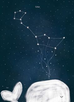 I'm Obsessed With The Night Sky So I Illustrated Arctic Constellations Star Constellations, Cute Illustration, Night Skies, Cute Wallpapers, Cute Art, Art Photography, Night Photography, Landscape Photography, Artsy