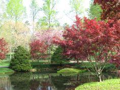 Gibbs Gardens, Ballground, GA