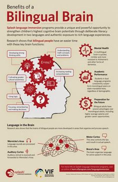 Educational infographic & data visualisation The Bilingual Brain – good reasons to learn a second language!… Infographic Description The Bilingual Brain – good reasons to learn a second language! Learning A Second Language, Dual Language, Learn A New Language, Spanish Language, Speech And Language, Foreign Language, German Language, Japanese Language, English Language Learners