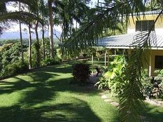 FSBO Norris Road, Wonga Beach, Queensland, Australia - RELUCTANTLY SELLING our TROPICAL FAMILY HOME on 5 PRIVATE ACRES. This superb double storey 4 bedroom home is your personal tropical tree change / sea change property close to the World Heritage Daintree National Park & The Great Barrier Reef. A large upstairs master bedroom with plenty of wardrobe space giving privacy away from the free flowing downstairs living area.