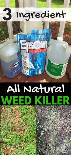 This simple recipe for natural weed killer not only saved my back but cost way less than the toxic brands at the store! My 5 acres is now manageable again! #gardeningideas #weedskillerrecipe