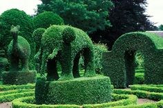 Green Animals topiary garden, Portsmouth, RI