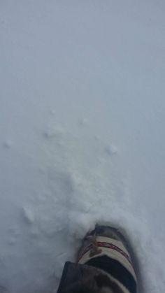 iqaluit nunavut x0a 0h0