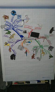 Met mijn klas gemaakte mindmap over dierentuin dieren