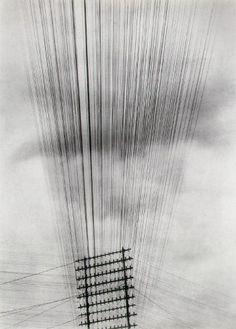 Tina Modotti, Câbles téléphoniques (1925)