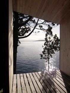 sauna in Ranco, Chile. Get all steamy in the sauna then jump in the lake. I miss michigan.