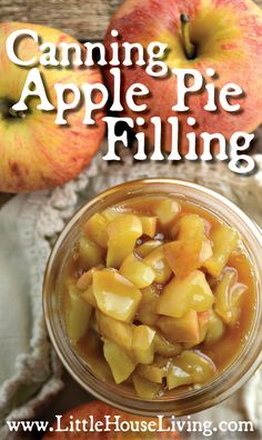 Pie Filling Make the most of the fall's apples by canning apple pie filling for delicious apple desserts all winter long!Make the most of the fall's apples by canning apple pie filling for delicious apple desserts all winter long! Canning Apple Pie Filling, Homemade Apple Pie Filling, Apple Pie Spice, Apple Desserts, Apple Recipes, Dessert Recipes, Delicious Desserts, Jam Recipes, Health Desserts