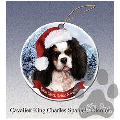 Cavalier King Charles Spaniel, Affectionate and Graceful. Spaniel Breeds, Spaniel Dog, Spaniels, Cavalier King Charles Dog, King Charles Spaniel, Dog Christmas Ornaments, Christmas Dog, Christmas Ideas, Xmas