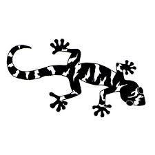 """Résultat de recherche d'images pour """"gecko"""""""