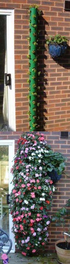 Hanging garden. Small space garden. Small garden. Garden ideas.