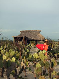 "Weekend Cabin: a new village of ""huts"" springs up near Puerto Escondido, the Mexican Pipeline, in Oaxaca. http://adv-jour.nl/Jj2mWU"