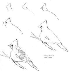 Draw a cardinal 2 | Art class ideas