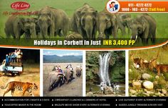 Life Line Tourism Provide Corbett Tour Package in just 3400 Per Person More: http://www.lifelinetourism.com/Jim-Corbett-Tour/