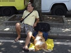 These two pals just chillin on the street corner. | The 49 Most WTF Pictures Of People Posing With Animals