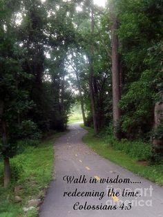 Walk in Wisdom by Sara Raber #Art #print #HomeDecor #ScriptureArt #scripture #verse #bible #Colossians