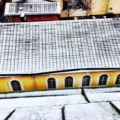"""20 Likes, 1 Comments - Mia Marttiini (@miamarttiini) on Instagram: """"Graafiset kattopellit. #snowyrooftops #graphicsnowdesign #downtownhelsinki #vanhamaneesi #citysnow❄️"""""""