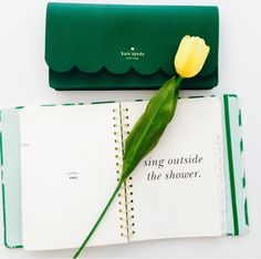 kate spade - like this darker shade of green for the floor New Handbags, Kate Spade Handbags, Kate Spade Bag, Things To Buy, Girly Things, Random Things, Prep Life, Wallets For Women, Stationery