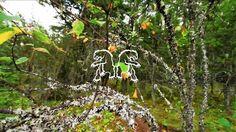 #nema #mtb #chromag Hardtail Soul :: Jinya Nishiwaki by Chromag. Jin hits the trails in Pemberton on his Chromag Hardtail. - Nema MTB