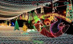 Multi-colored Christmas lights transform the usually muddy Medellin River into a spectacular holiday attraction. Send Christmas Cards, Christmas Pictures, Christmas Displays, Christmas Decorations, Multi Colored Christmas Lights, Holiday Lights, Latin Travel, Christmas In America, World Images
