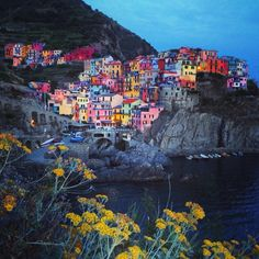 Cinque Terre, Manarola, Florence, Italy — by Emma McEvoy. Colourful towns on a cliff in Cinque Terre!
