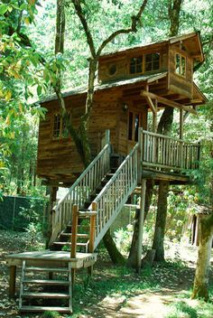 This Bed and Breakfast has the best of both worlds. The treehouses are beautifully ambitious, featuring cabins with detached porches and three levels.