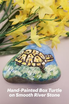 Original acrylic painting rendered on smooth riverstone. This piece is sealed with clear satin varnish and may be used indoors or out in the garden. Makes the perfect gift for the box turtle lover! Over 4 inches wide--can be propped up or laid down flat. Hand Painted Rocks, Painted Stones, Small Gifts, Unique Gifts, Handmade Gifts, Turtle Gifts, Turtle Painting, Small Art, Stone Art