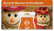 This cutie is 10% off this month only Message me for details! www.cblue.scentsy.us gracefulscent@gmail.com