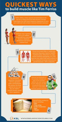 Quickest Way to Build Muscle like Tim Ferriss  Infographic