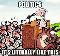 Politics //Can't help but agree. Too few are real statesmen or women these days.