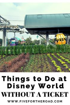 Disney World Honeymoon, Walt Disney World Vacations, Family Vacation Destinations, Disney Cruise, Disney Trips, Travel Destinations, Disney Vacation Planning, Orlando Vacation, Orlando Resorts