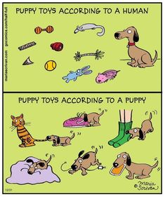 Puppy Toys - this is my Daisy for sure!