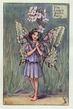 Ladys-Smock Flower Fairy Print c.1927 Fairies by Cicely Mary Barker