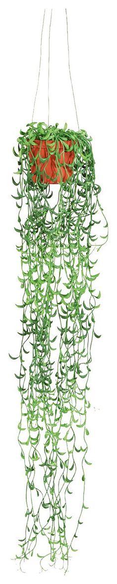 Artikeldetails:  Täuschend echter Seneciohänger, Im braunen Künststoff-Hängetopf 8x6cm, Höhe: 60 cm,  Material/Qualität:  Kunststoff, Topf aus Kunststoff,  ...