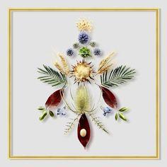 Framed Floating Botanicals & Feathers // DIY Inspo | ...love Maegan