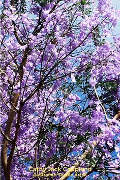 Wonderful inspiration for textile and fibre art comes from nature. Just look at this amazing colour palette from a Jacaranda tree and a blue sky. #ideas #inspiration #naturephotography #textileart #fibreart