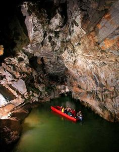 Plan to spend the day at Penn's Cave and Wildlife Park - America's only all-water cavern and wildlife park. Located in Centre Hall, Pa,. visitors will step underground to see breathtaking limestone formations during the fully-guided #cavern tour which is given by motorboat and includes a ride on Lake Nitanee.