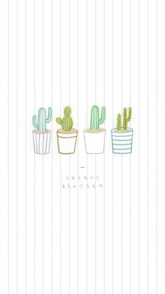 Aesthetic Cactus Wallpaper : aesthetic, cactus, wallpaper, Cactus, Lockscreens, Ideas, Cactus,, Wallpapers,, Iphone, Wallpaper