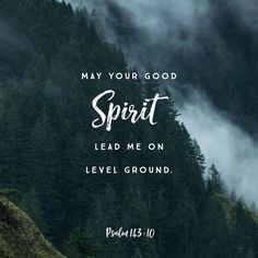 Teach me to do thy will; for thou art my God: thy spirit is good; lead me into the land of uprightness. Psalms 143:10 KJV