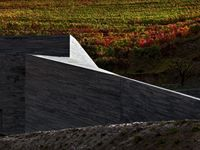 THE WINERY Gravity Winery Peso da Régua - Portugal The proposal of enlargement of the Quinta do Vallado Winery and Hotel, conciliates the need of the extension of the existing cellar with the proper integration in the landscape. The intervention aims. Portugal, Douro Valley, Industrial Architecture, Wine And Spirits, Brewery, Fields, Facade, Vineyard, Exterior